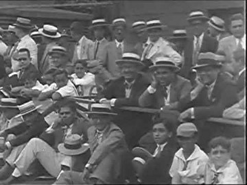 baseball crowd
