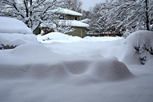 cars under a blizzard of snow, colorado