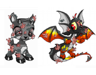 neopets pandemic