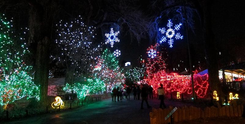 neon, led, christmas lights, zoo lights, snowflakes