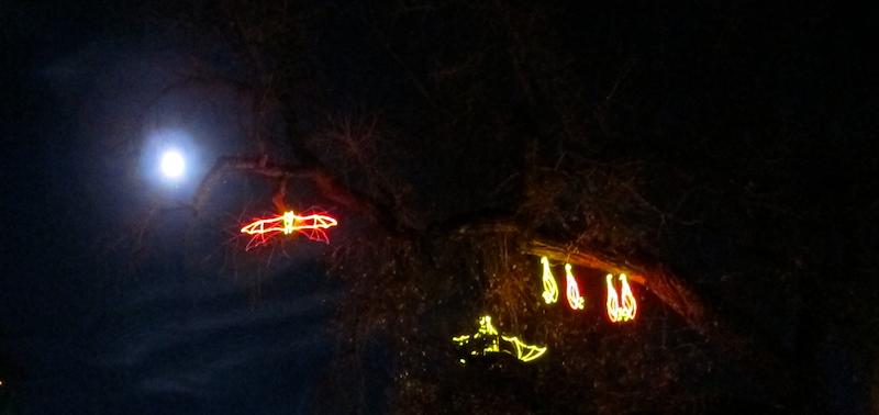 illuminated light up bats, moon