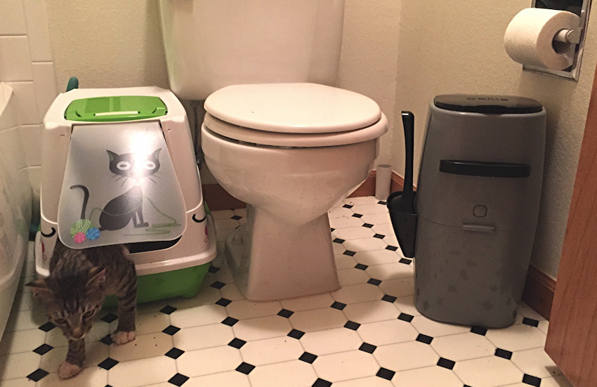 litter genie and cat litter box in bathroom