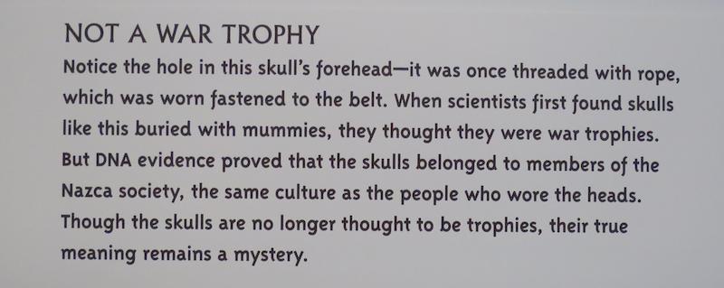peruvian peru trophy skulls
