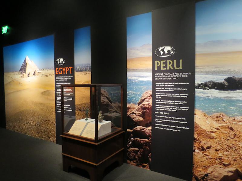 peru to egypt, field museum mummies beyond tomb denver museum nature science dmns