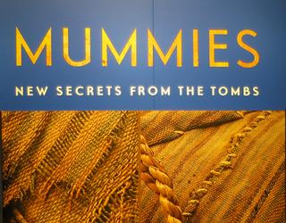 dmns mummies secrets tombs exhibit