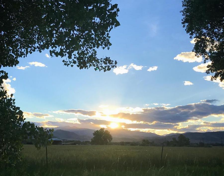 sunrise / forgiveness