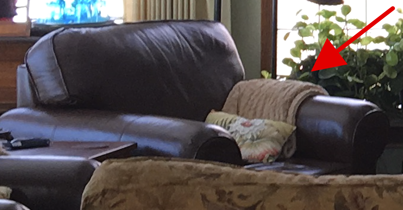 the missing blanket